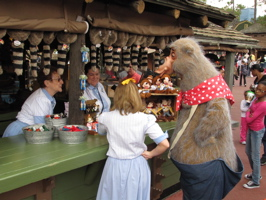 JeffLangeDVD.com » Country Bear Jamboree