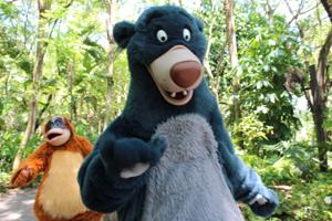 9_Baloo