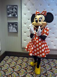 45_Minnie